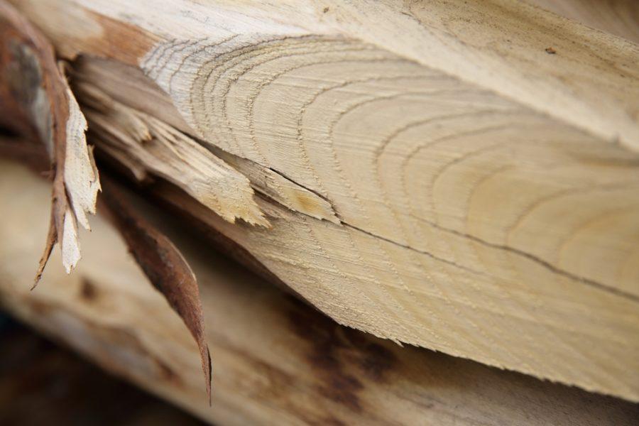 bois bpn fournisseur vente le neubourg bois paysager du neubourg