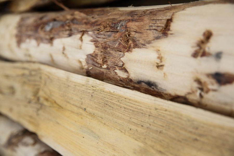poteau chataignier en bois fendu main bpn
